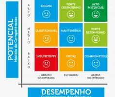 Nine Box | Guia Completo da Matriz de Desempenho e Potencial!