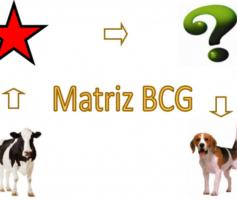 Matriz BCG Para Otimizar a Aplicação Dos Recursos. Saiba Como!
