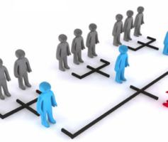 Estrutura Organizacional Afeta a Imagem da Empresa. Saiba Como!