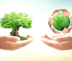 Logística Reversa | A Devolução Gerando Lucro Para Sua Empresa