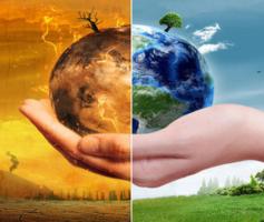 Sustentabilidade Ambiental | Consciência Verde Regulando As Profissões